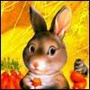 Аватар для Dinar Dmitrievich